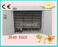 CE approved Fully Automatic Egg Incubator YZTIE-17