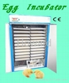 CE approved full autoamtic chicken egg