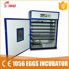 CE approved automatic chicken egg