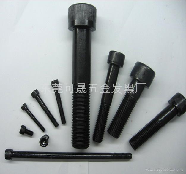 發黑不鏽鋼螺絲 1
