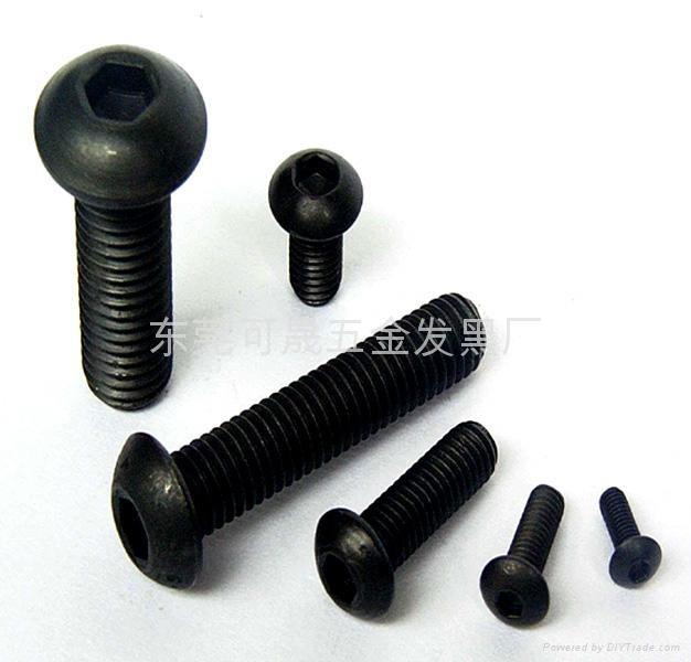 發黑不鏽鋼螺絲 2