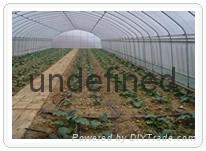 新型蔬菜大棚骨架機  1