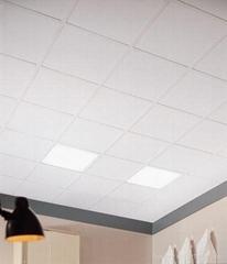 阿姆斯壯特殊性能礦棉吸音天花板