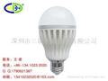 LED球泡灯 LED bulbs  1