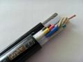 行車電動葫蘆手柄連接控制電纜 5