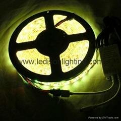 12V 24V DC LED Light Strip SMD5050 LED