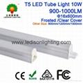 CE SAA UL listed LED Tube Light T5 10W