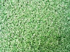 人造門球場草坪