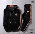 Wholesale Newest Gucci Tracksuit Gucci suit Wool suit Gucci pant Gucci hoody  5