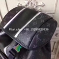 Louis Vuitton Damier Graphite Canvas Cowhide  leather Men backpack LV bags
