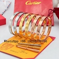 wholesale Cartier Bracelet Cartier Ring Cariter Necklace Luxury jewelry Cariter 1