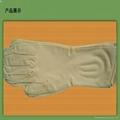 Free Powder Latex Gloves