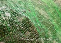 穩泰優質邊坡防護網