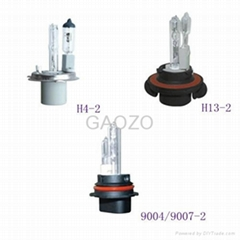 Halogen and Xenon HID Combined Bulb