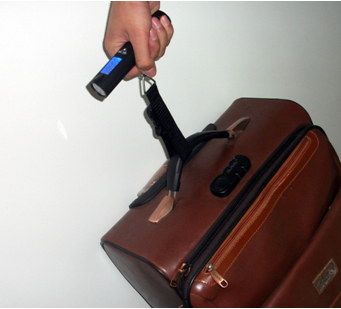 50kg*10g luggage scale with led flashlight 4