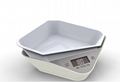 2kg-5kg High Quality Digital Kitchen Scale