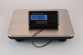 Bench Shipping Scale