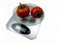 Tempered glass digital kitchen scale