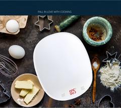 10kg LED Display Kitchen Scale