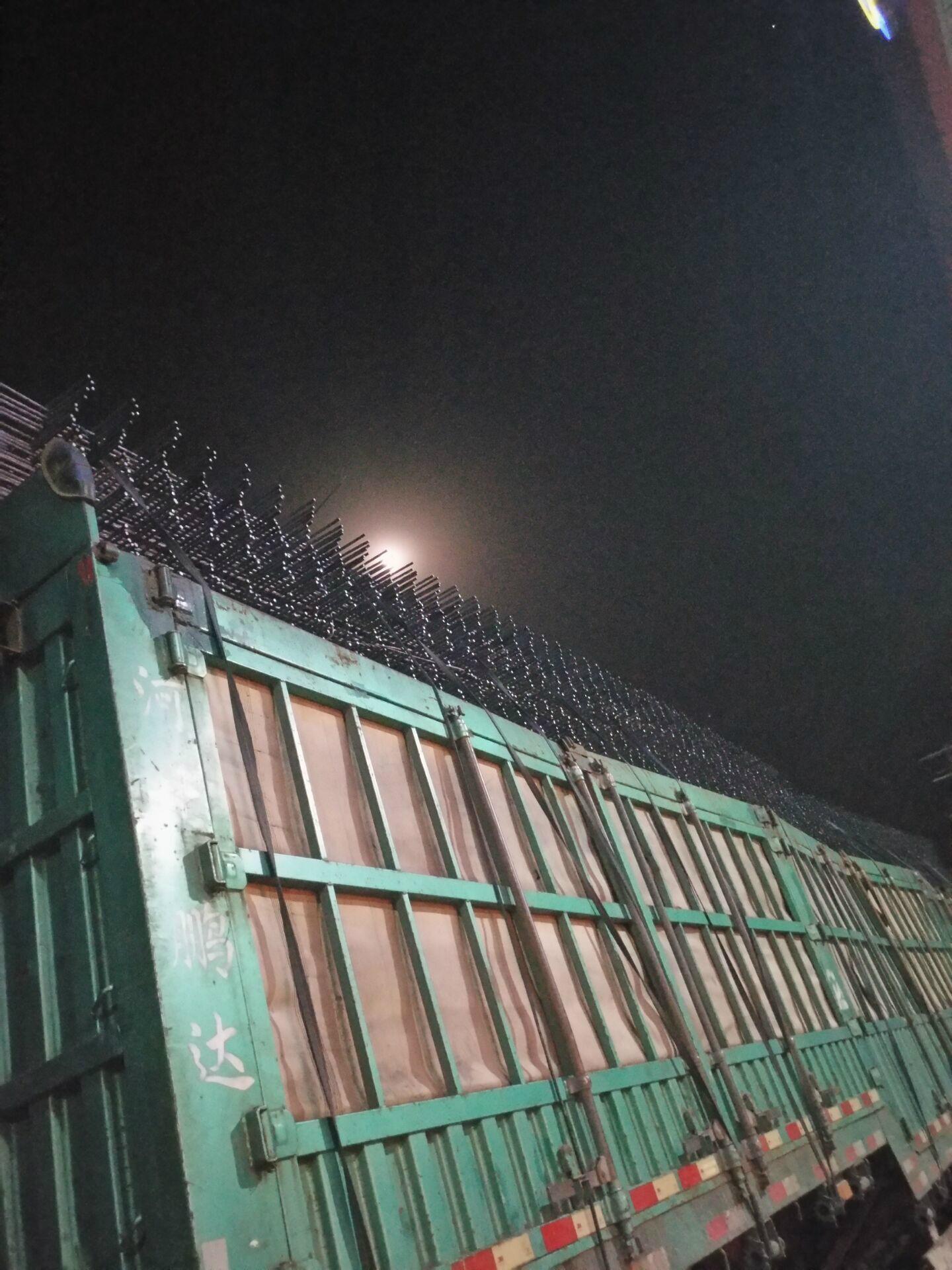 高速公路铁路机场防护用网电焊网片 3