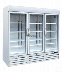 3 Glass Door Display Freezer