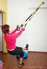 TRX Suspension Training belt