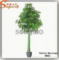 Professional Supplier of Artificial Bonsai Tree with High Quality at Best Price 1