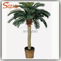 Professional Supplier of Artificial Bonsai Tree with High Quality at Best Price 5