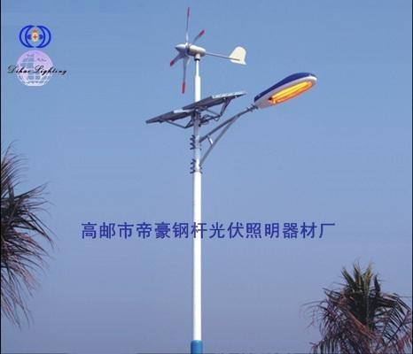 太阳能风能路灯 1