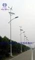 太阳能风能路灯 2