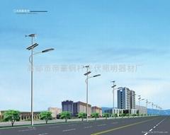 New rural solar street lamp