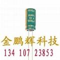中山市绿宝石电解电容器