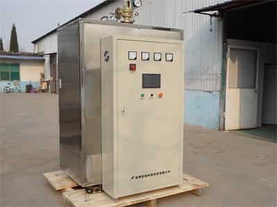 大型工业电热蒸汽锅炉  5