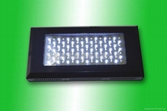 55*2W led Aquarium lights