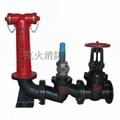 SQS100地上式水泵接合器