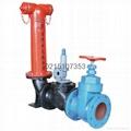 SQS100地上式水泵接合器 5