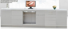 dentale Cabinets steel material