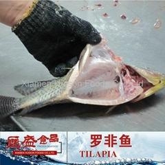 black tilapia g/s ggs