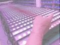 LED洗牆燈4in1-點控 4