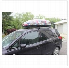Colorful and Accept Own Design Roof Box