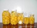 供应果润斯绿色有机天然各种规格栗甘露煮 1