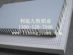 铝蜂窝幕墙(天花)板