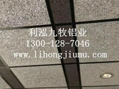 泡沫铝(发泡铝)吸音板