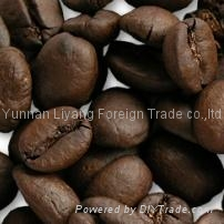 arabica coffee beans from yunnan china manufacturer supply
