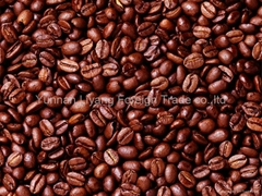 arabica coffee beans manufacturer oem and private lable service we can offer