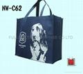 Non woven shopping bags / ECO Bags