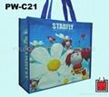 PE / PP Woven Bag- shopping bag