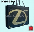 立体型不织布环保购物袋 ( 汽