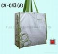 帆布购物袋 / 环保袋 ( 大