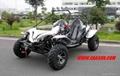 Gokart 500 CC / Buggy 500 CC